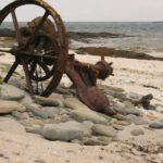 Piratenschatz und Meereswesen