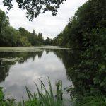 Naturschutzgebiete Rietbenden und Niepkuhlen